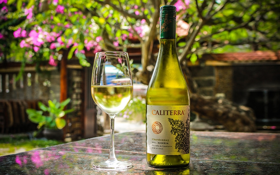 Caliterra Tributo Sauvignon Blanc, Casablanca Valley, Chile